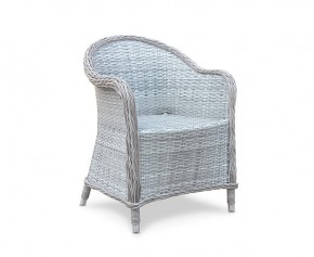 Eaton All Weather Wicker Garden Armchair