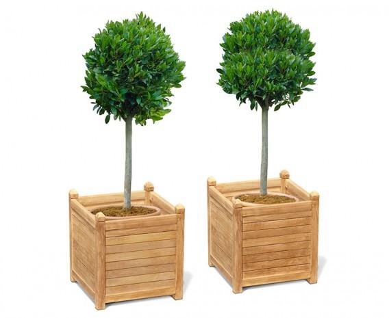 Set of 2 Zen Extra Large Garden Planters, Teak Wood