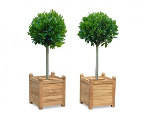Set of 2 Zen Large Garden Planters, Teak Wood